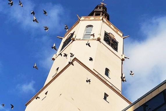 Rynek - wieża ratuszowa